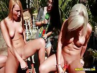 Beautiful blondes inserting objects