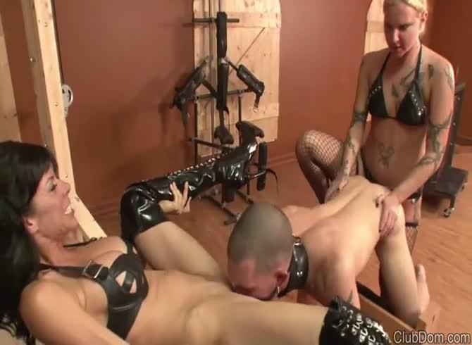 Бисексуалы женская доминация порно ролики