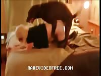 Lovely blonde adores getting assfucked by a dog on her father's bed