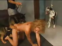 Wanting married whore engaging in zoophilia sex with dog to as her husband records the fun