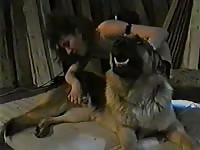 This incredible bestiality fucking movie features a sensational MILF sucking and fucking K9