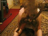 Lovely Mexican cutie with a big ass gets banged by her dog